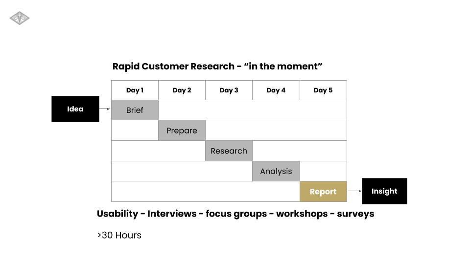 Bigligh Rapid Customer Research